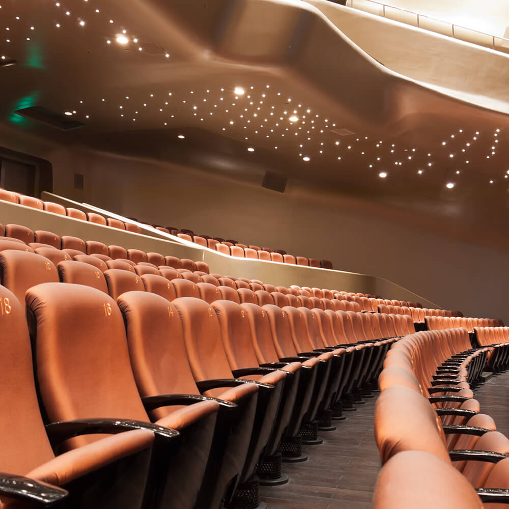 A large theater with brown leather seats