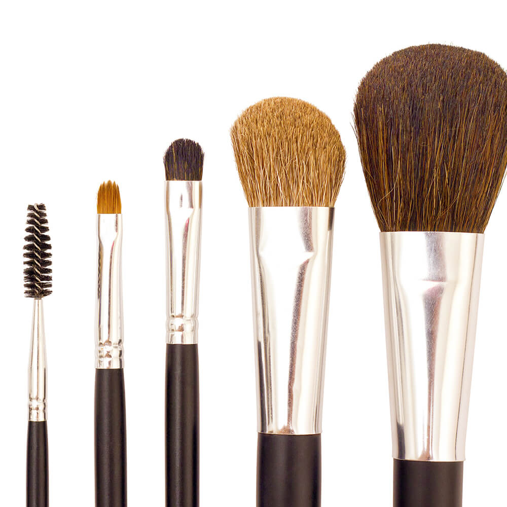 Five cosmetic brushes in various sizes