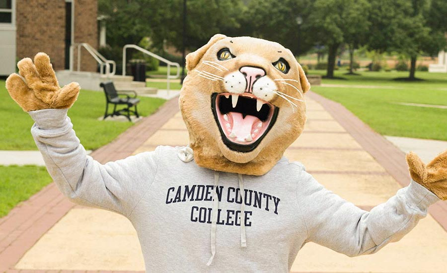 cougar is a camden county college sweater
