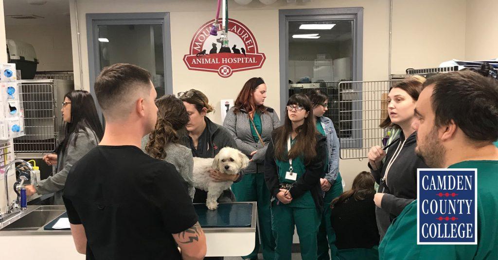 VetTec Students participate in a Career Trek to Mount Laurel Animal Hospital